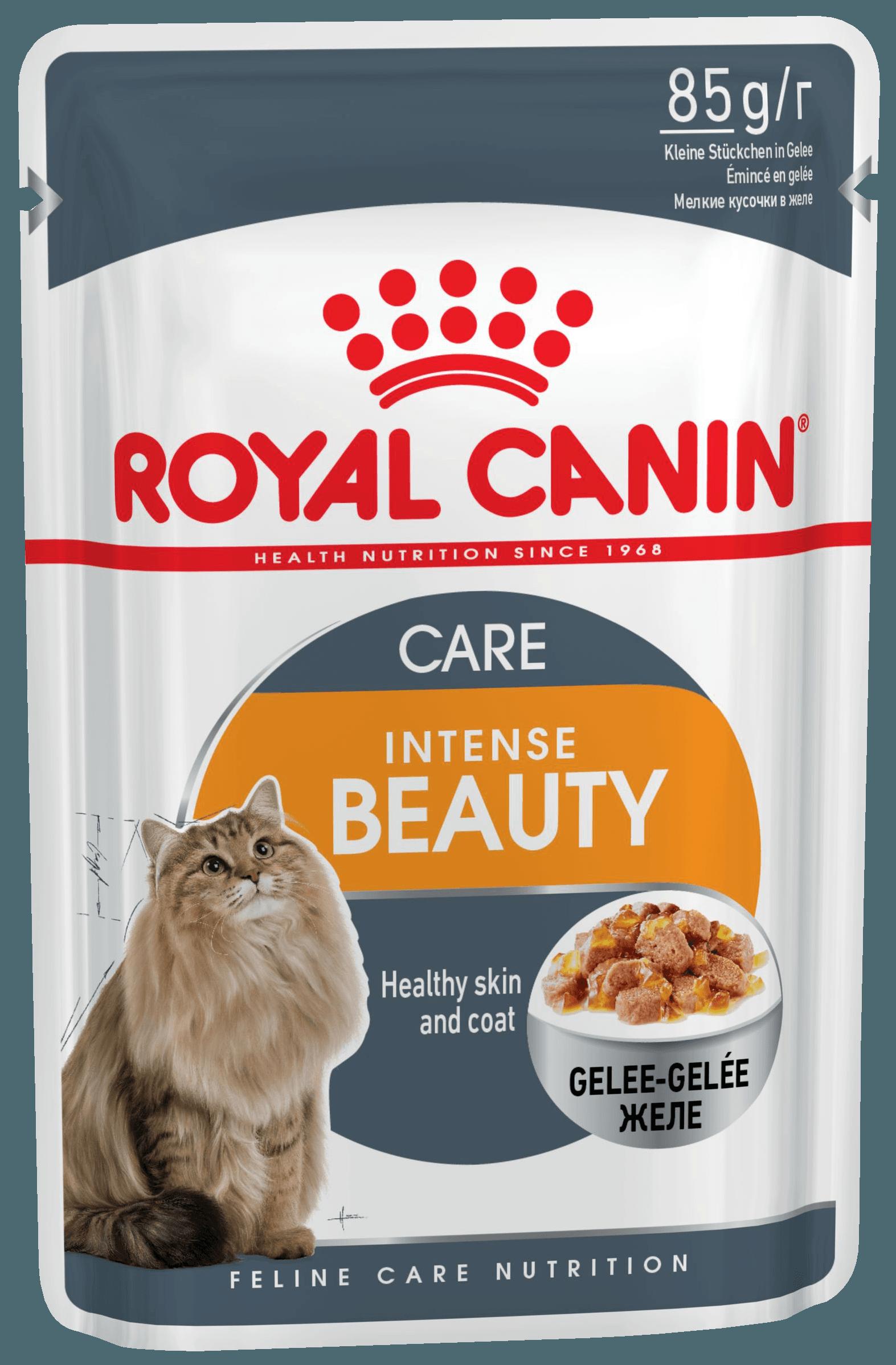 Лучший корм для кота для шерсти
