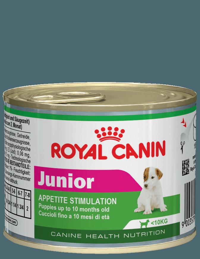 собаки весом до 10 кг породы