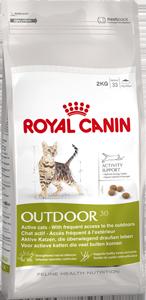 корм для мейн кунов супер премиум класса Royal Canin