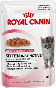 чем кормить бенгальскую кошку Royal Canin