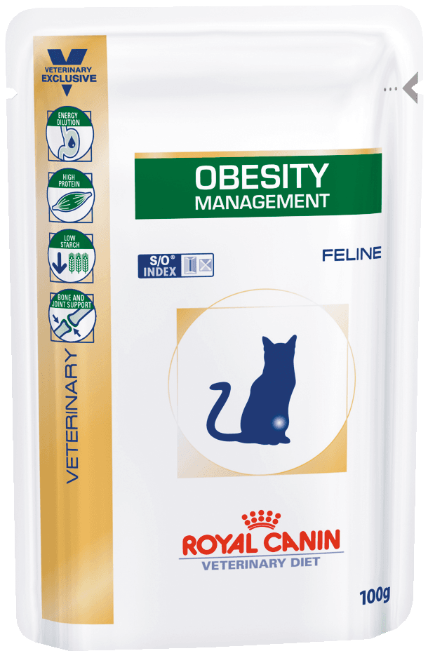 Диета для котов при ожирение