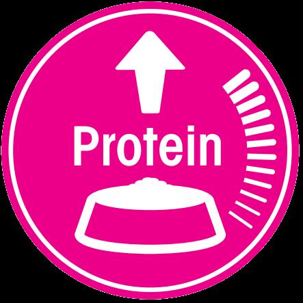 proteinexigent1.png