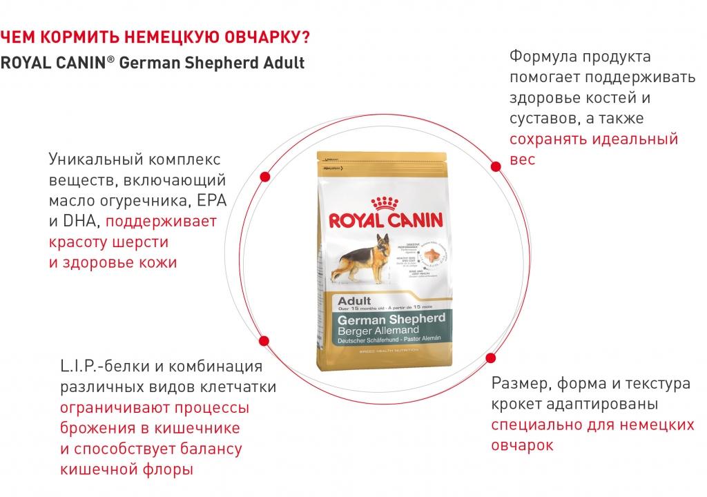 RC-product-4.jpg