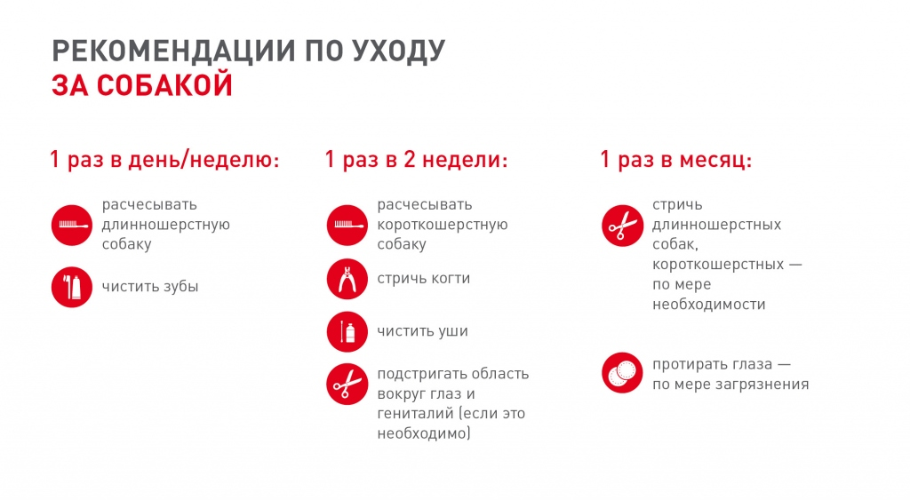 Royal-Canin1-5.jpg