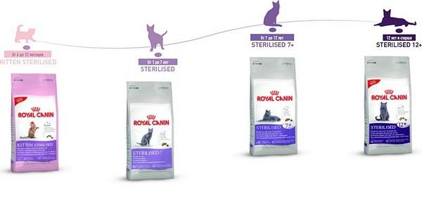 Гамма кормов для стерилизованных кошек