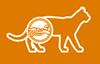 Здоровая мочевыделительная система кошки