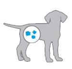 Профилаткика заболеваний у щенков далматина