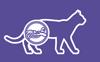 Здоровая мочевыводящая система кошки