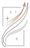 Белая шерсть Мальтезе