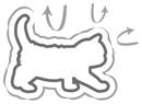 Укрепление иммунитета котенка