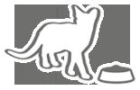 Баланс корма для кошек