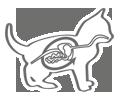Защита пищеварительной системы котенка
