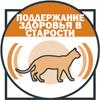 Поддержание здоровья кошки в старости